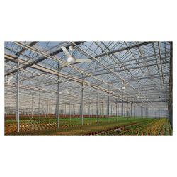 Ventilador de techo Vortice 142 cm IPx5  para ambientes húmedos.