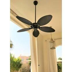 Ventilador de techo para exterior IP44, bronce y aspas en palma de material compuesto 137 cm