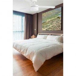 Ventilador de techo, níquel de 122 cm, con lámpara, aspas de dos colores, mando a distancia IR FARO 33607 Panay