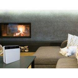 Purificador de aire para habitaciones de 15 m² especialmente diseñado para fumar cigarrillos.