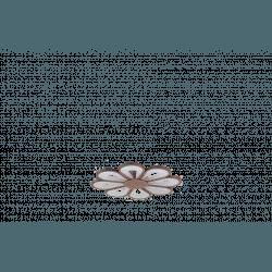 Kit de luz LED Flor marrón 40W 4000K